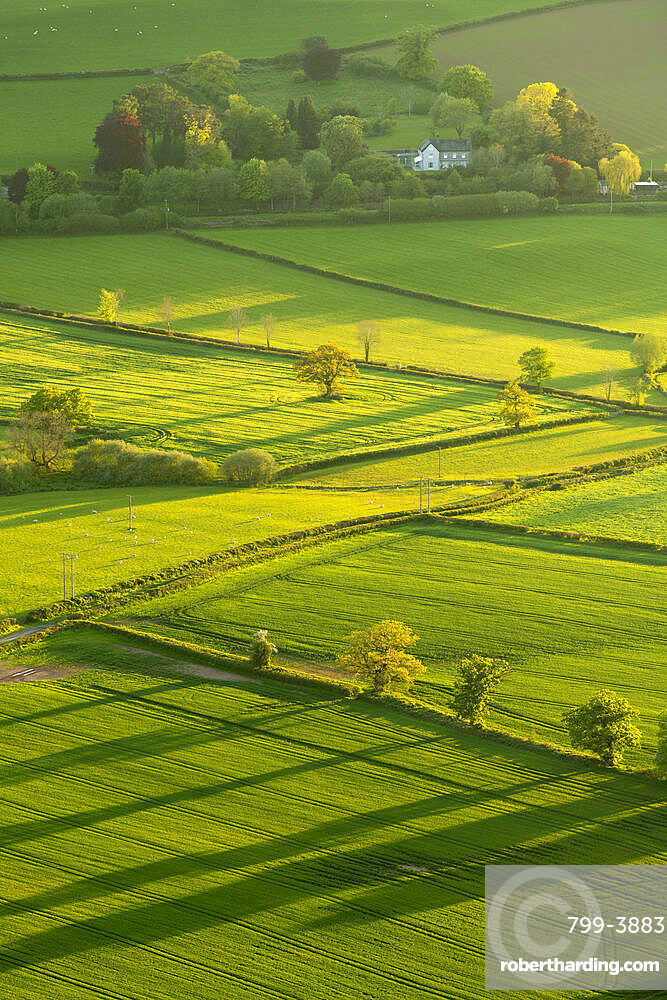 Lush rolling farmland in spring in the Brecon Beacons National Park, Powys, Wales, United Kingdom, Europe