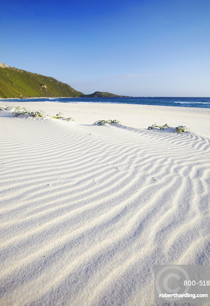 Conspicuous Cliffs beach, Walpole, Western Australia, Australia, Pacific