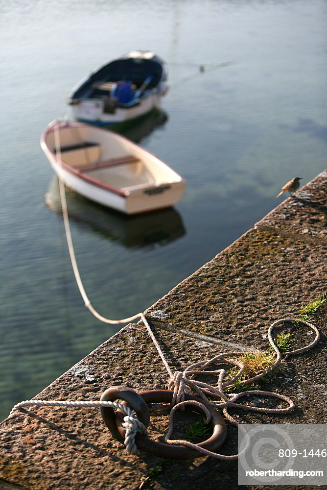 Boats, Roscoff, Finistere, Brittany, France, Europe
