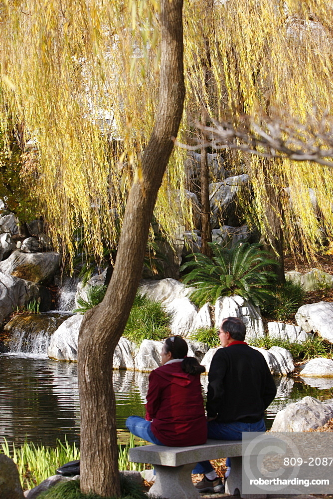 Chinese Garden, Sydney, New South Wales, Australia, Pacific
