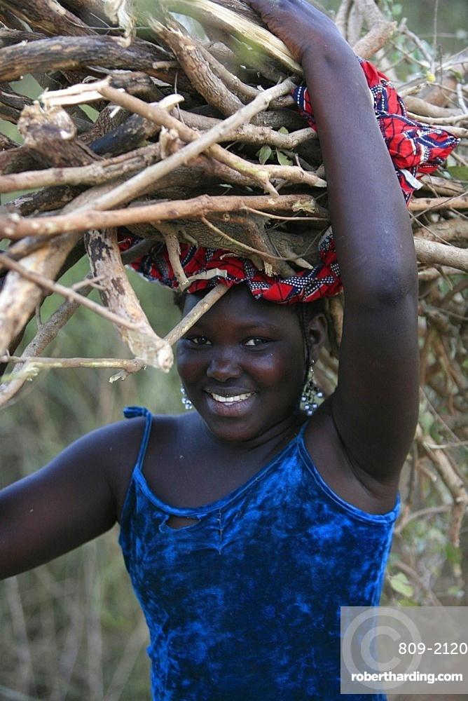 Wood chore, Keur Moussa, Senegal, West Africa, Africa