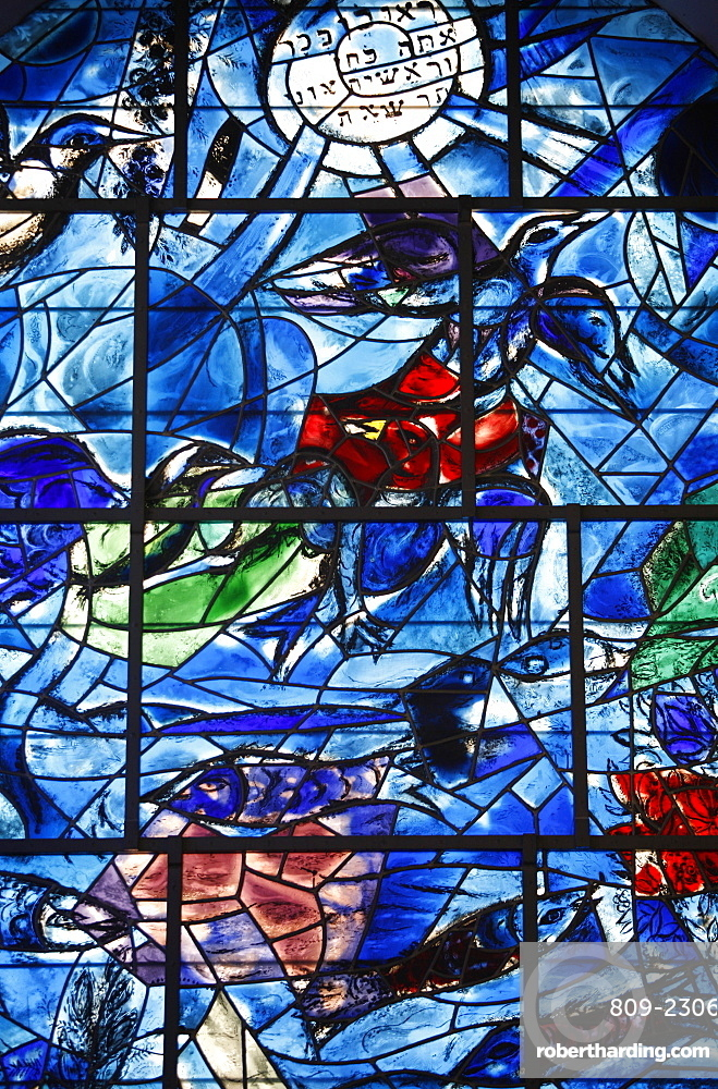 Stained glass window in the Synagogue of the Hadassah hospital showing the Tribes of Israel, the Reuben, Ein Karem, Israel, Middle East