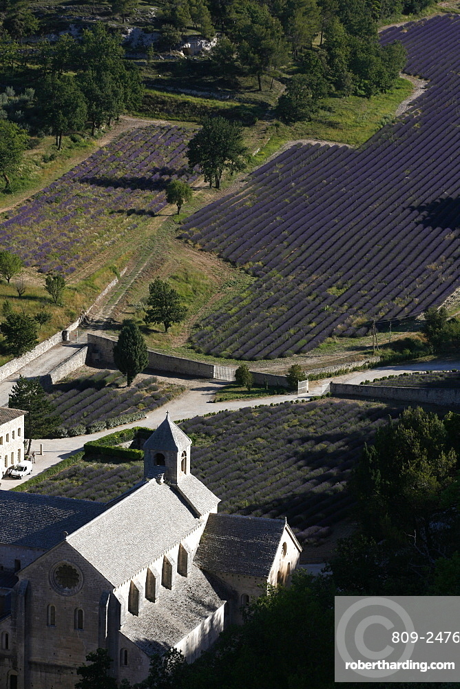 Notre-Dame de Senanque Abbey, Gordes, Vaucluse, France, Europe