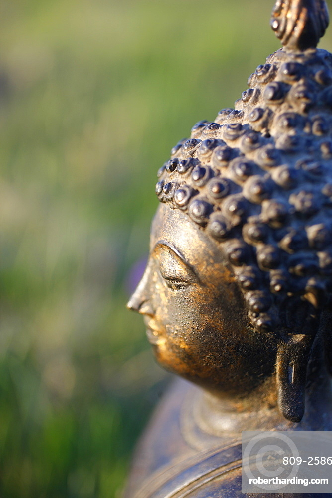 Thai Buddha, Haute Savoie, France, Europe