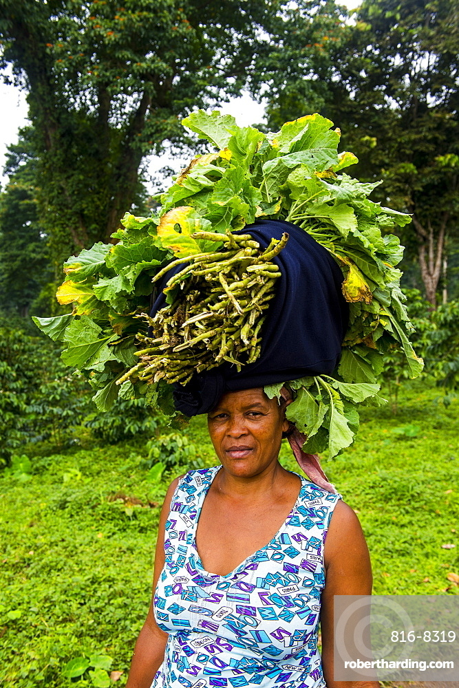 Woman carries a huge stack of vegetables on her head, Sao Tome, Sao Tome and Principe, Atlantic Ocean, Africa
