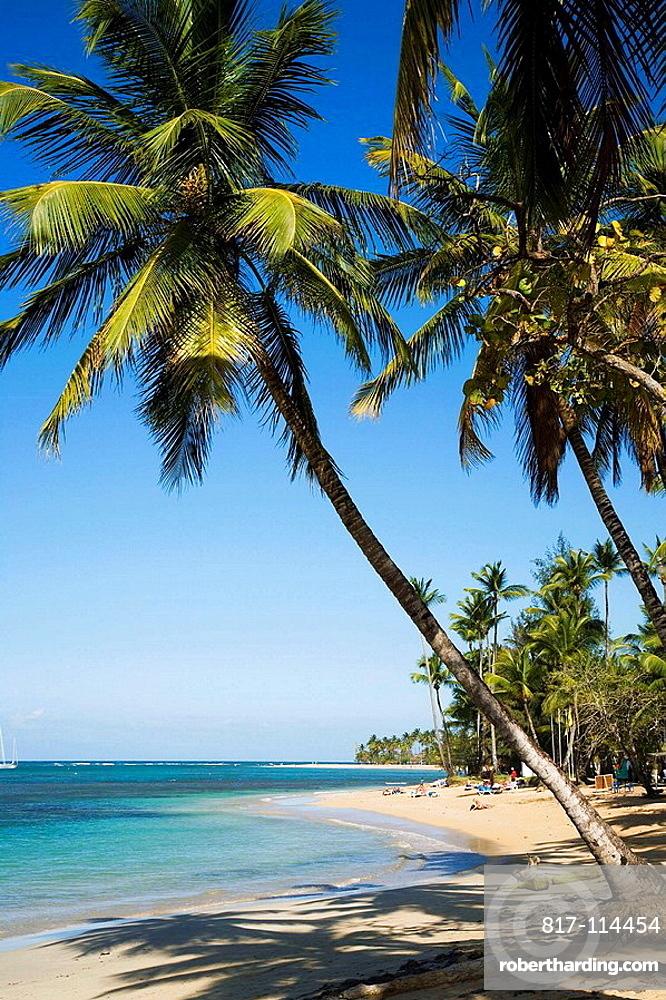 Caribbean Dominican Republic Samana Peninsula Las Terrenas