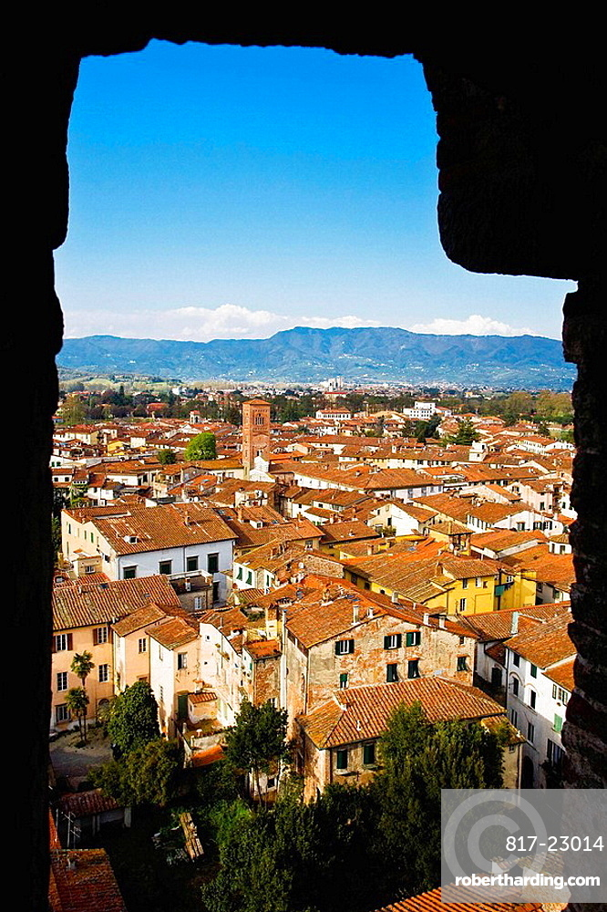 The town from Torre (tower) Guinigi, Lucca, Tuscany, Italy