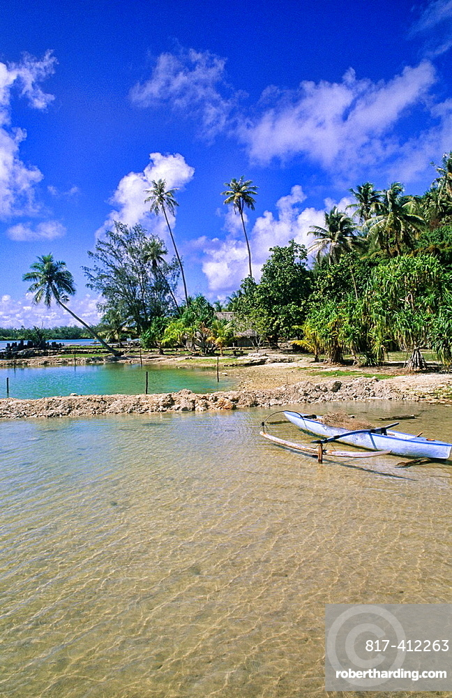 Native boat beach and palm in Tahiti in French Polynesia in the South Pacific Rim