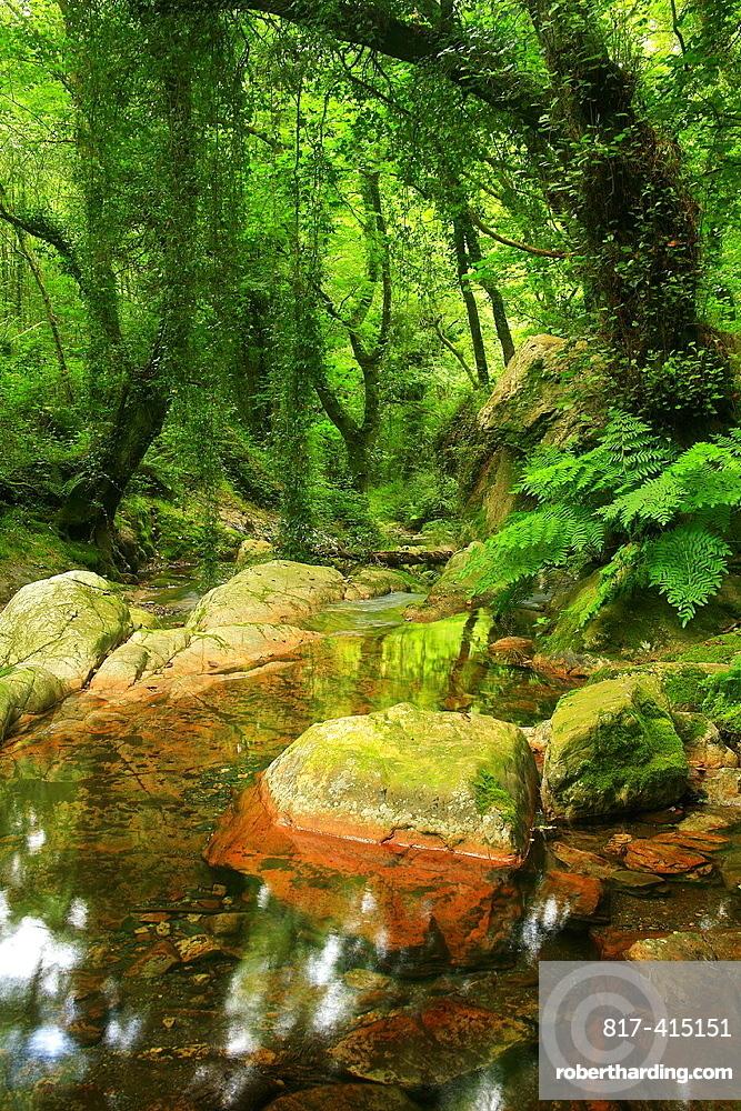 Natural Monument Oneta cascades Navia council Asturias