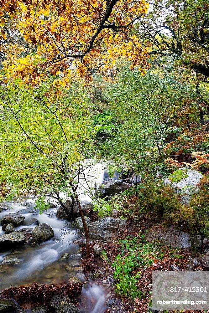 Retamalejo gorge in the Sierra de Gredos Piedralaves avila Castilla Leon Spain