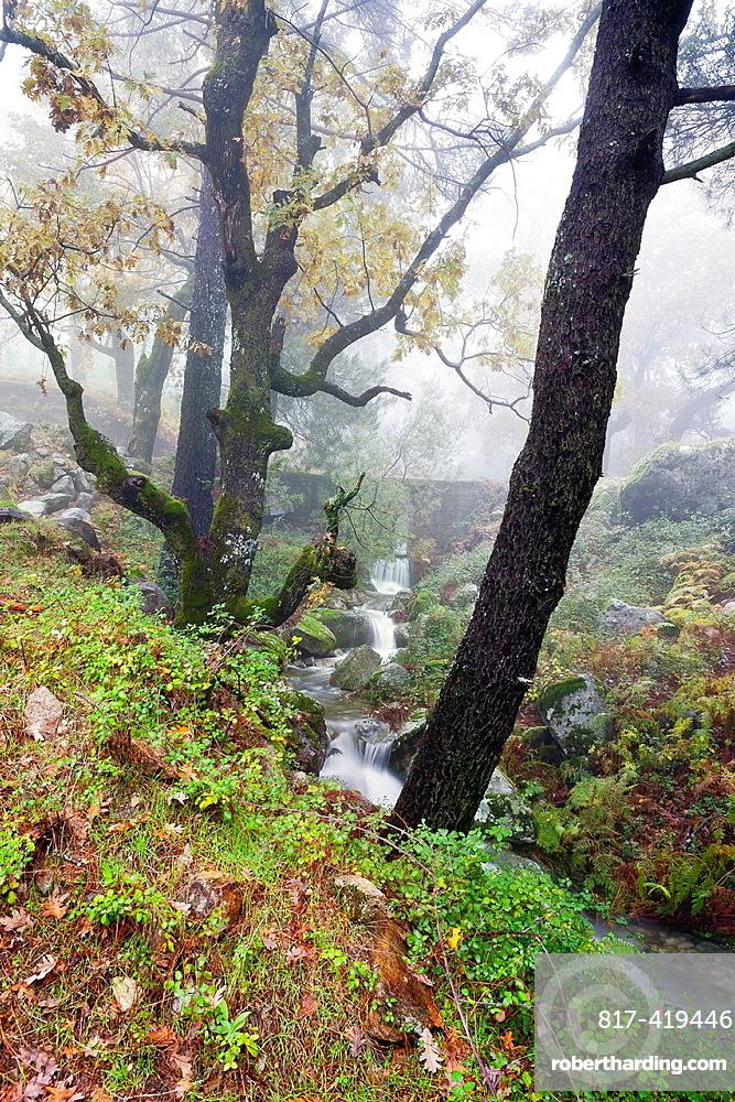 La Graja gorge Sierra de Gredos Piedralaves Â¡vila Castilla Leon Spain