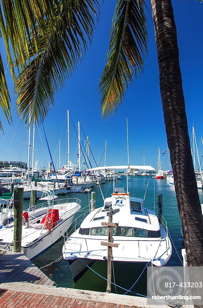Key West Marina, Key West, Florida, USA