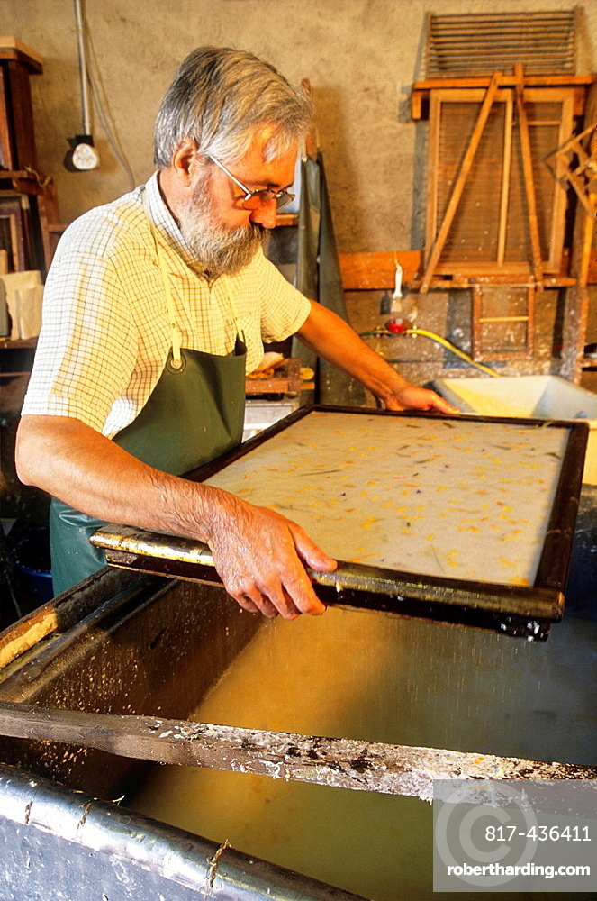 sieving, traditional paper-making, workshop of Mr Gouy, Fontenoy-la-Joute, one of the Book Towns, Meurthe-et-Moselle department, Lorraine region, France, Europe