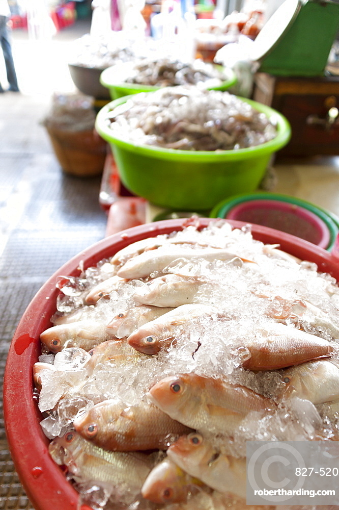 Fish on ice in a food market, Phnom Penh, Cambodia, Indochina, Southeast Asia, Asia
