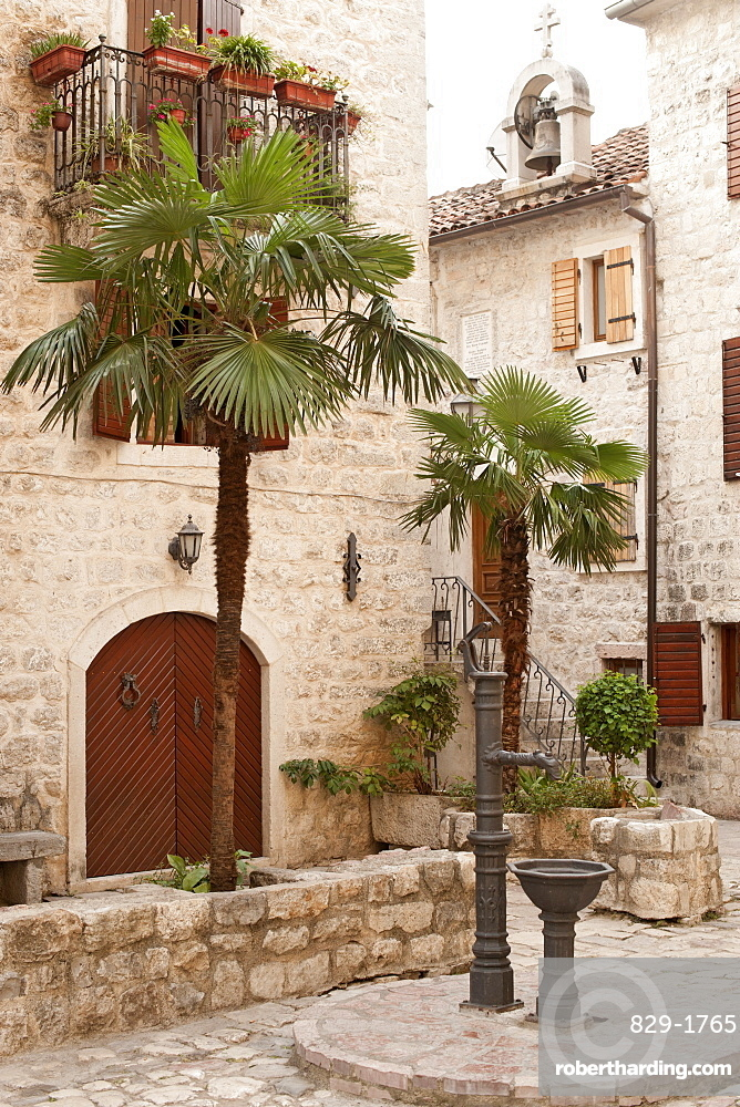 Courtyard with palm trees in the old town of Kotor, UNESCO World Heritage Site, Montenegro, Europe