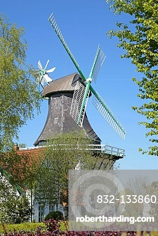 Windmill Anna in Norby near Rieseby on the Schlei Inlet, Schleswig-Holstein, Germany, Europe