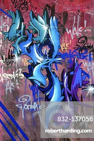 Graffiti on the ruins of a former military base, Hohe Warte near Giessen, Hesse, Germany, Europe