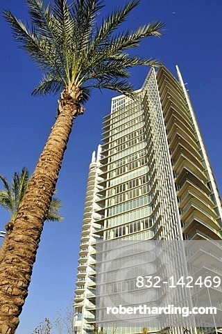 Palm tree in front of the Marina Tower, port of Beirut, Lebanon, Middle East, Asia