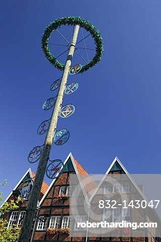 Symbols of craftsmen, maypole at Spiekerhof, Muenster, North Rhine-Westphalia, Germany, Europe