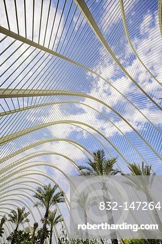 L'Umbracle palm garden, Ciudad de las Artes y las Ciencias City of Arts and Sciences, Valencia, Comunidad Valencia, Spain, Europe