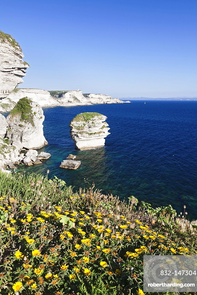Free-standing rock Grain de Sable on the rocky coast near Bonifacio, Strait of Bonifacio, Corsica, France, Europe