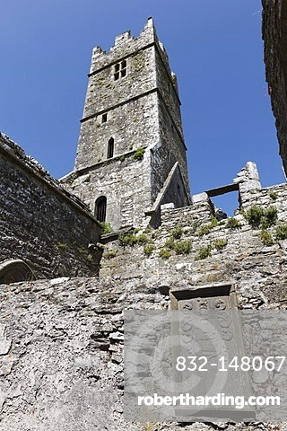 Ross Abbey near Headford, County Galway, Connacht, Republic of Ireland, Europe