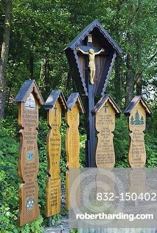 Dead boards near Cham, Bavarian Forest National Park, Lower Bavaria, Germany, Europe