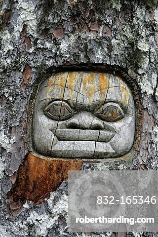 Tree carving in the rain forest in the Glacier Bay National Park, Alaska, USA