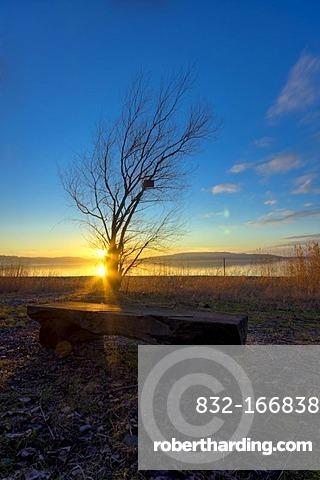 Sunset on Reichenau island, view towards the Hoeri peninsula, Landkreis Konstanz county, Baden-Wuerttemberg, Germany, Europe