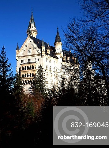 Neuschwanstein Castle, Allgaeu, Upper Bavaria, Germany, Europe