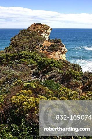 Vegetation and coastal cliffs, Great Ocean Road, Port Campbell National Park, Victoria, Australia