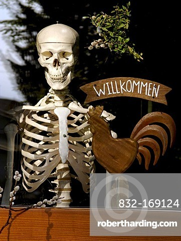 Human skeleton with a German welcome sign