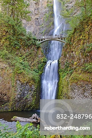 Multnomah Falls, Columbia River Gorge, Cascade Range, Oregon, USA
