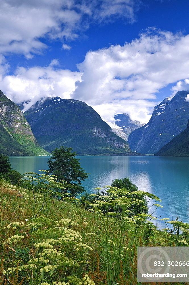 single jenter i fjord)