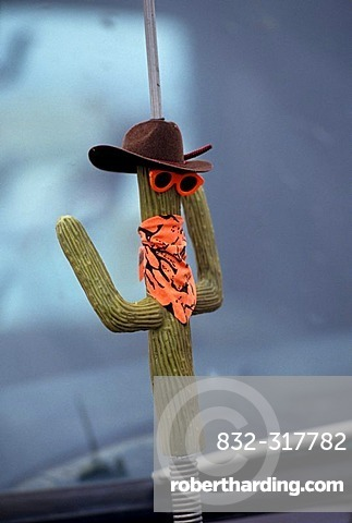 USA, United States of America, Arizona:car antenna with cactus design toy.