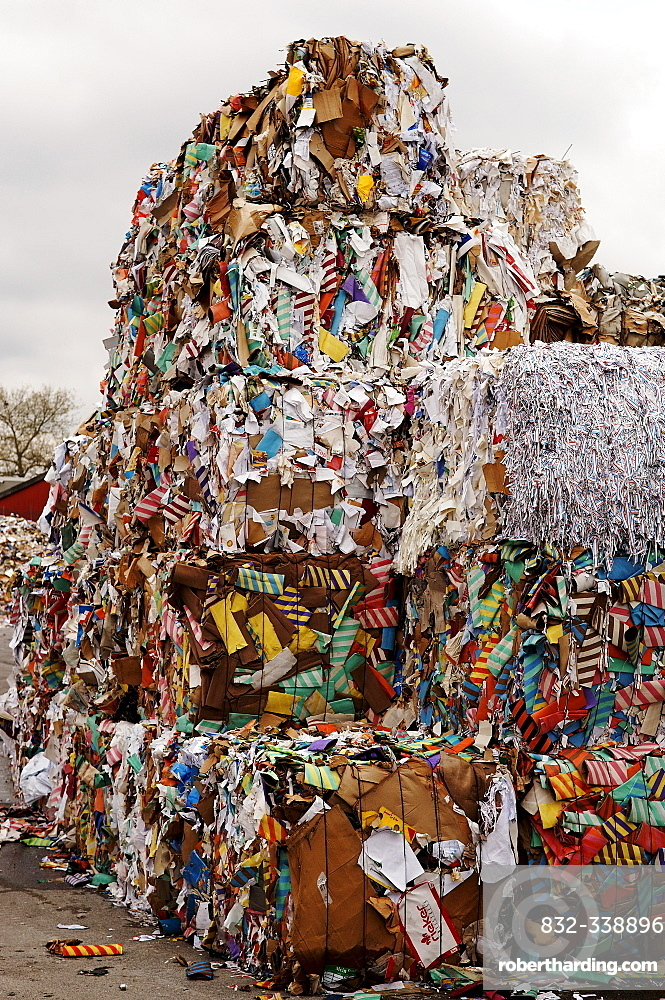 Bundled waste paper for recycling, Bamberg, Upper Franconia, Bavaria, Germany, Europe