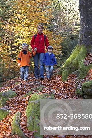Woman and two children walking through autumnal forest, Carinthia, Austria