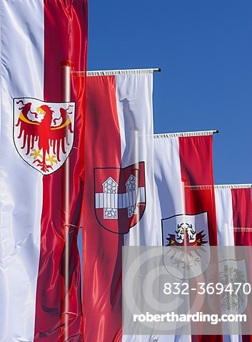 Flags for the Autonomous Province of South Tyrol, the town of Innsbruck, Tyrol and the Republic of Austria, forecourt of the