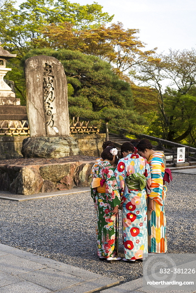Japanese girls in traditional kimonos, group, Kyoto, Honshu, Japan, Asia