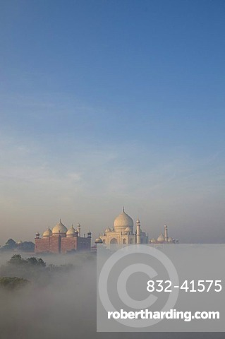 Taj Mahal, UNESCO World Heritage Site, arising out of the morning fog over river Yamuna, Agra, Uttar Pradesh, India, Asia