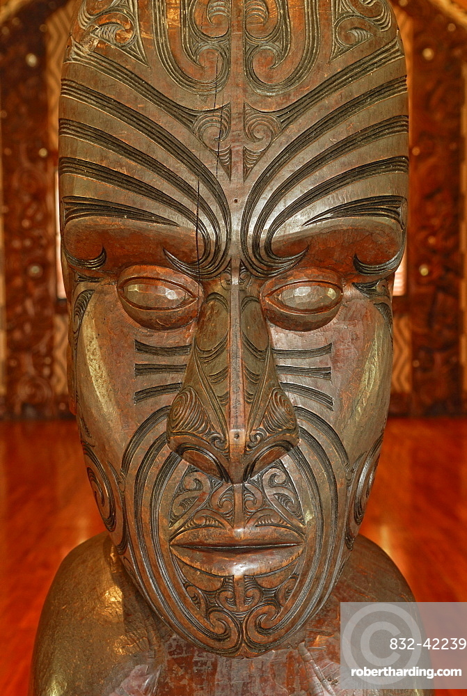 Maori carving, head with tattoo lines, Maori Meeting House, Waitangi Treaty Grounds, Waitangi, North Island, New Zealand