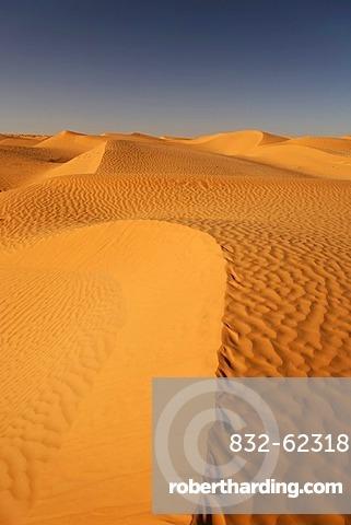 Desert landscape in the Sahara near Ksar Ghilane, Tunisia, Maghreb, North Africa, Africa