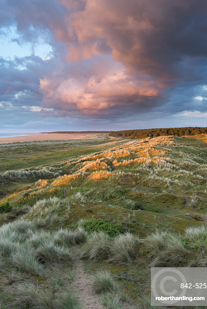 A view from the dunes of Holkham Bay, Norfolk, England, United Kingdom, Europe