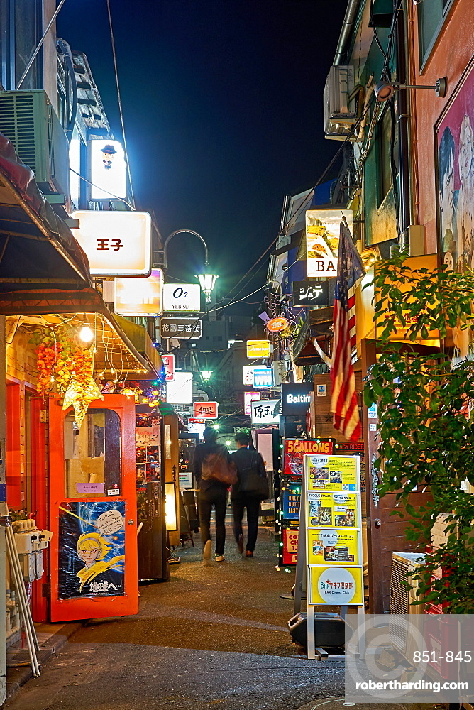 Nightlife in Golden Gai alley, Tokyo, Japan, Asia