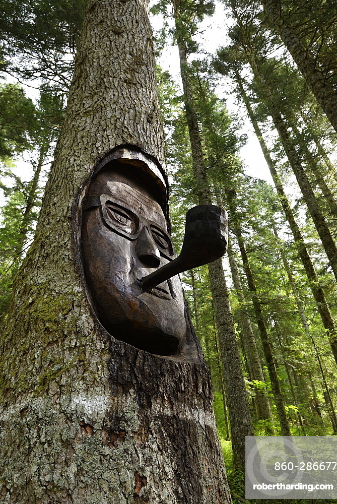 """Fir """"President Faure"""" in Fourgs forest, old tree 450 years whose trunk is carved face of Edgar Faure and his pipe, Silver fir (Abies pectinata), Haut- Doubs, Franche-Comté, France"""