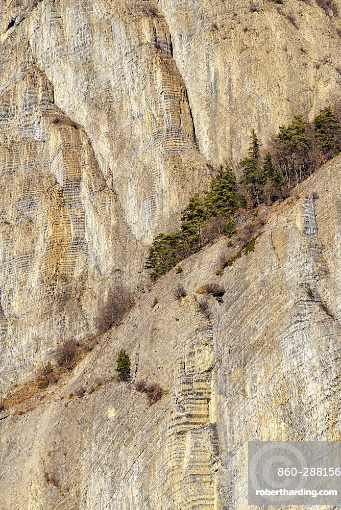 Cliff with remarkable stratifications, folded layers of marls and limestones of the Lower Jurassic, above Bassey near Bourg d'Oisan, Ecrins NP, Alps, France