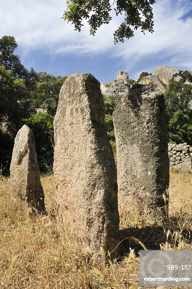 Rinaju Alignment of neolithic menhirs erected around 6500 years ago at Cauria, Corsica, France, Europe