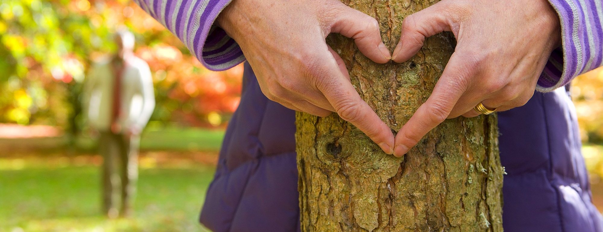786-6777 ( Ian Lishman ) - Close up of senior woman making heart-shape on tree trunk with hands