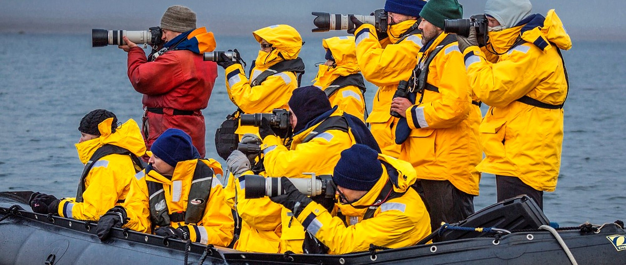 817-441501 ( Ragnar Th. Sigurdsson ) - Tourist in Zodiacs watching and photographing polar bears, Svalbard, Norway.